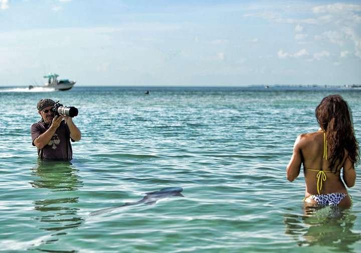 http://img705.imageshack.us/img705/1741/swimmingwiththesharks.jpg